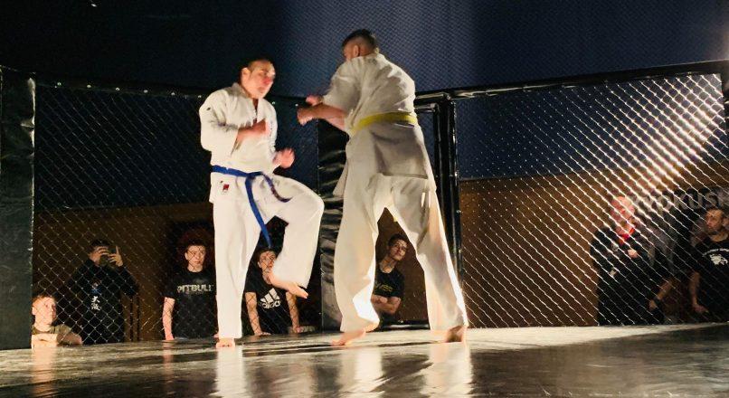 Pro Karate: Gijs Hoek vs Piotr Pasiewicz