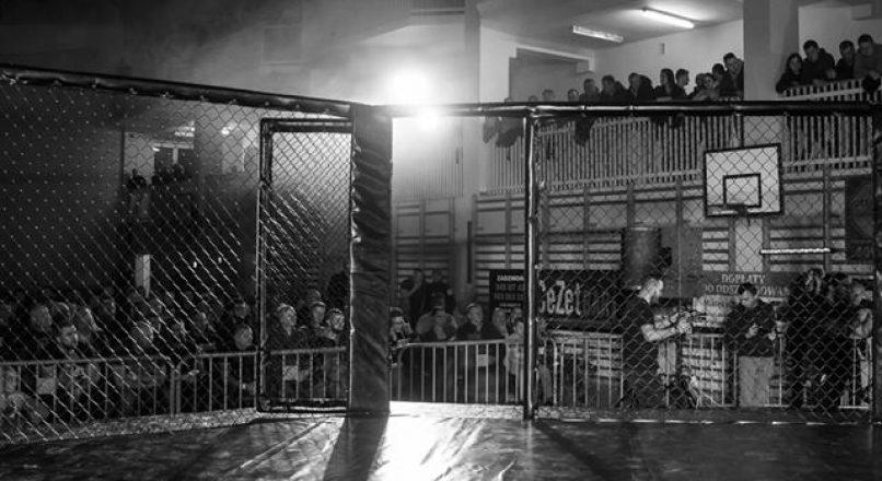 Odwołane gale MMA z powodu Covid 19
